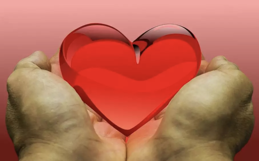 O Dia de Doar é comemorado nesta terça-feira, 3 (Crédito: Crédito: Imagem de wagnercvilela por Pixabay)