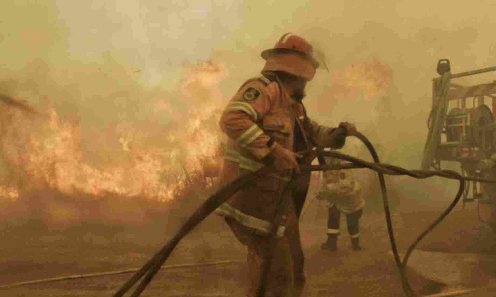 Incêndios na Austrália, iniciados em setembro, estão entre os mais severos do país (Crédito: NSWRFS/Fotos Públicas)