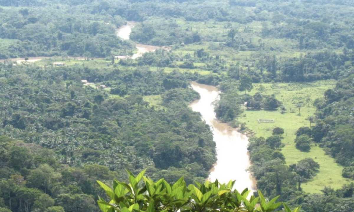 A SERRA DO DIVISOR É UM DOS LOCAIS DE MAIOR BIODIVERSIDADE DA AMAZÔNIA (FOTO: ICMBIO/DIVULGAÇÃO)